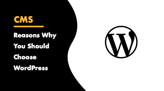 Reasons why you should choose WordPress to build your website
